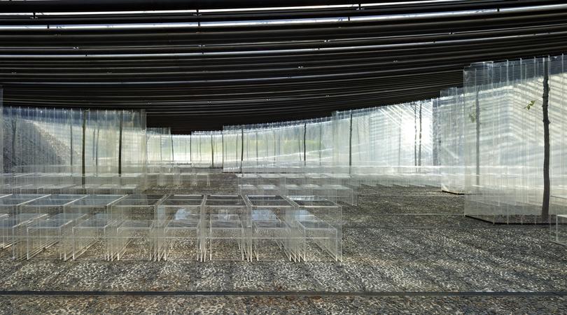 Carpa al restaurant les cols | Premis FAD 2013 | Arquitectura