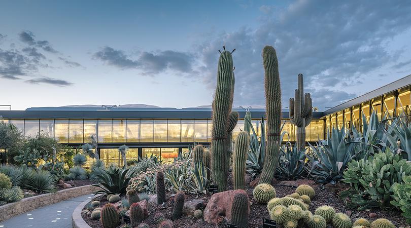 Desert city   Premis FAD 2018   Arquitectura