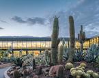 Desert City | Premis FAD  | Architecture