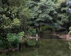 Pavilhão do Lago | Premis FAD  | Ephemeral Interventions