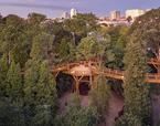 TreeTop Walk | Premis FAD  | Ciudad y Paisaje