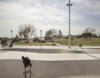 Landskate Parks. Xarxa de Parcs Esportius Urbans de Barcelona | Premis FAD  | Ciutat i Paisatge