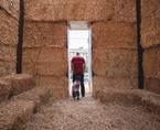 Montanha agriCultural | Premis FAD  | Intervencions Efímeres