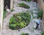 el jardín (in)temporal | Premis FAD  | Intervenciones Efímeras