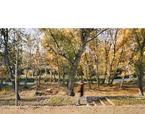 Regeneració paisatgística del Camí de Cabrianes | Premis FAD 2020 | Ciudad y Paisaje