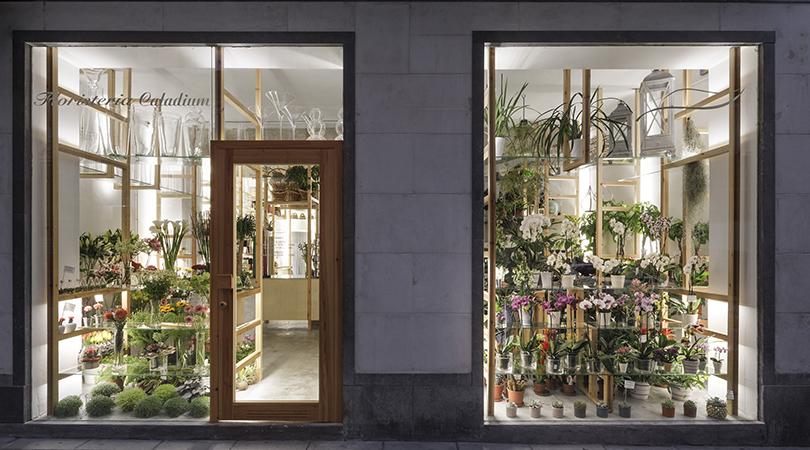 Orquideas y escaleras | Premis FAD 2018 | Interior design