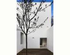 Casa em Alfama | Premis FAD  | Arquitectura