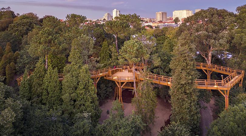 Treetop walk | Premis FAD 2020 | Ciutat i Paisatge